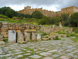 The Roman Forum at the Chellah, Rabat